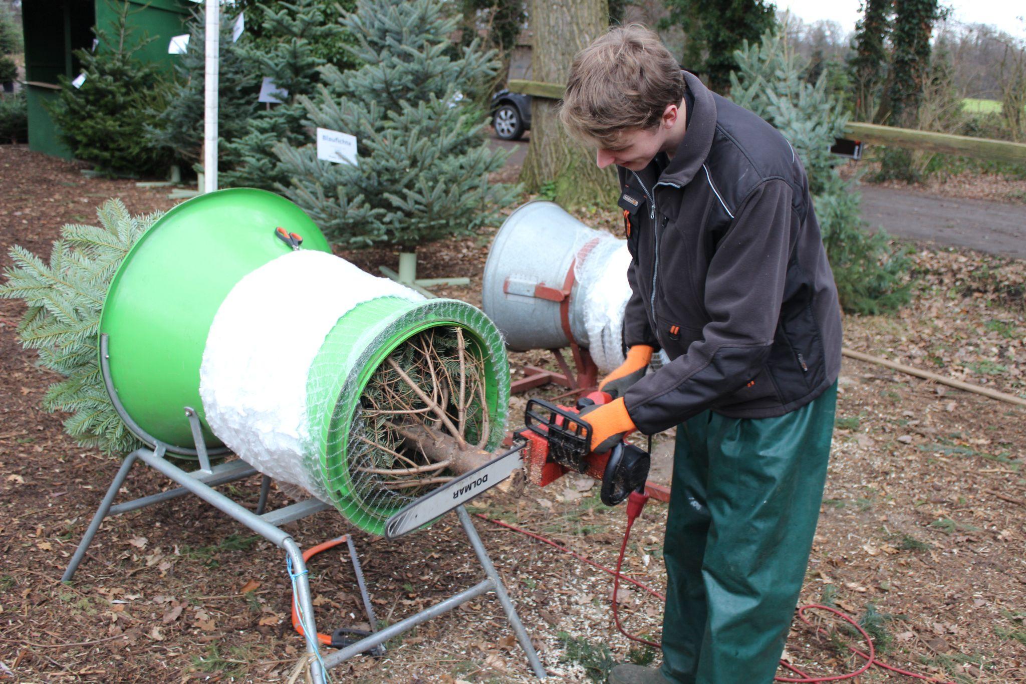 Zuschneiden für jeden Baumständer